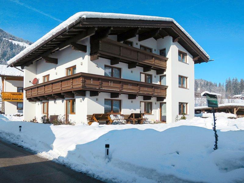Elisabeth (ZAZ776), location de vacances à Aschau im Zillertal