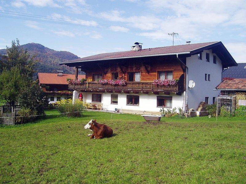 Obingerhäusl (KMS202), holiday rental in Brandenberg