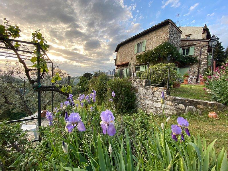Florence Villa Violetta, alquiler de vacaciones en Bagno a Ripoli