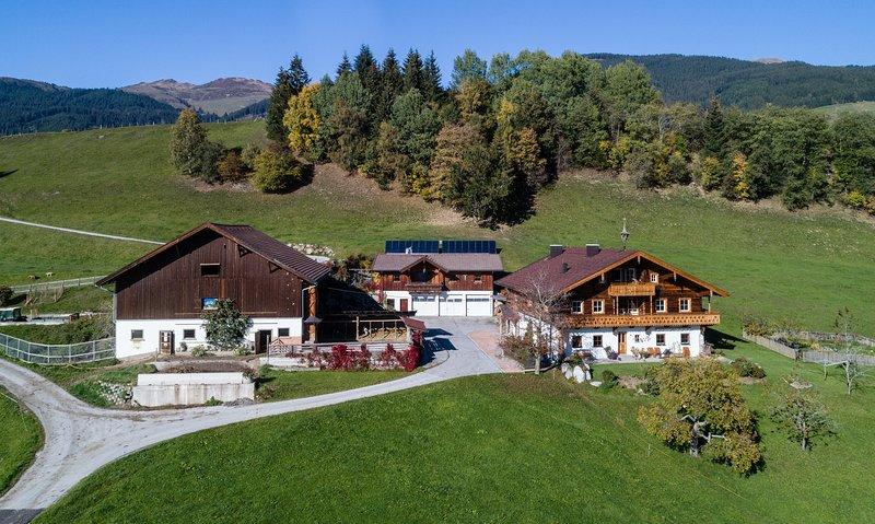 Ihr Traumurlaub im Ferienhaus Widholzhof im schönen Salzburger Land, location de vacances à Mittersill