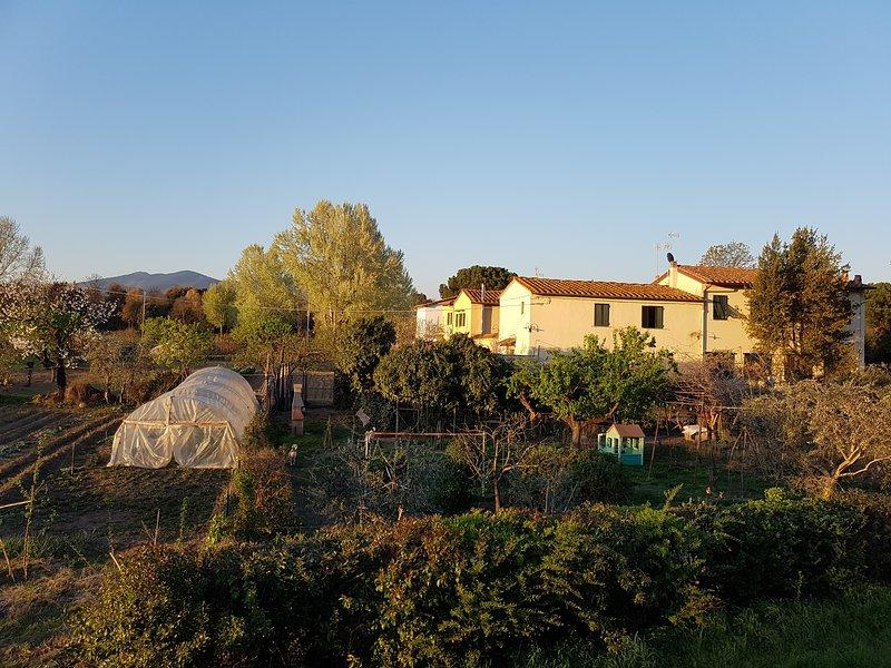 Antica Fattoria Firenze - agriturismo appartamento nel parco dell'Arno a Firenze, holiday rental in Mantignano