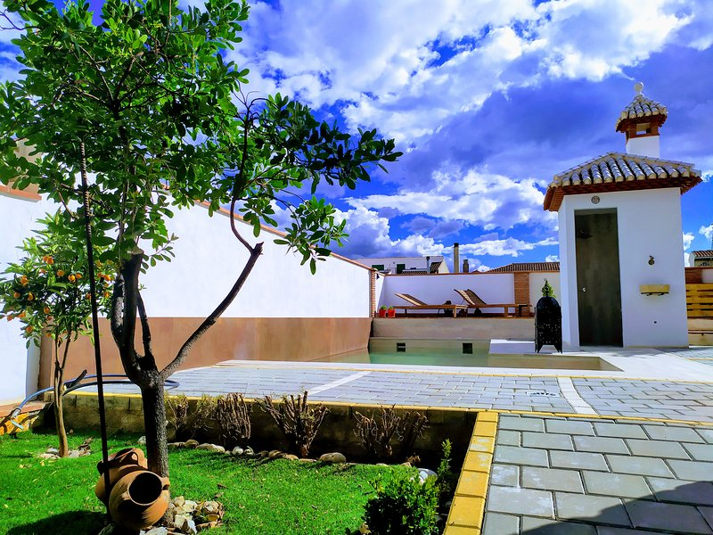 Spacious villa with swimming-pool, holiday rental in Niguelas