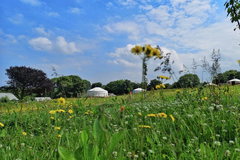 Quince Yurt, vacation rental in Newquay