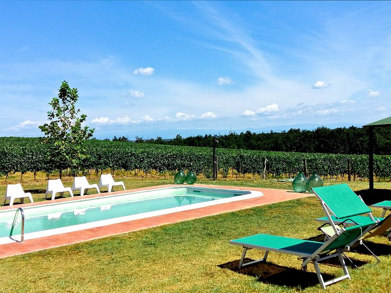 Pisa Toscana (GVS121), holiday rental in Pontedera