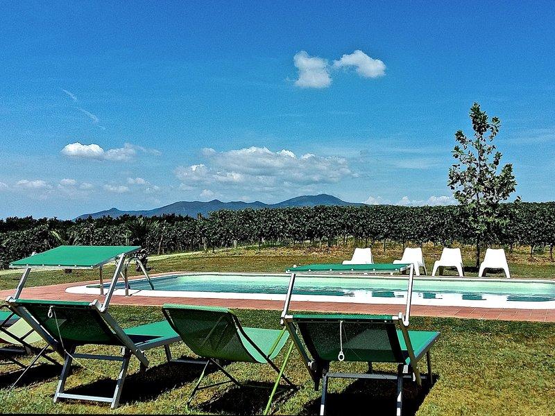 Pisa Toscana (GVS122), holiday rental in Pontedera