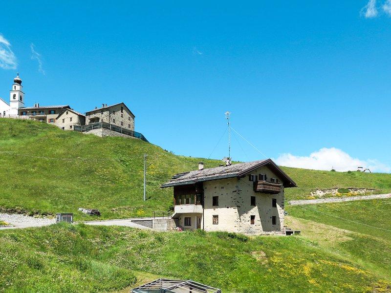 Rainolter (LII611), holiday rental in Trepalle