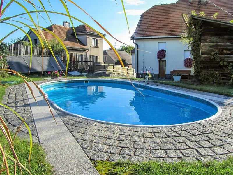 Nepomuk, holiday rental in Pilsen