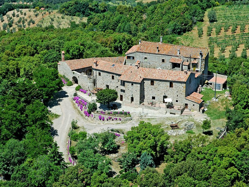 Castello di Civitella (ROC208), vacation rental in Sticciano Scalo
