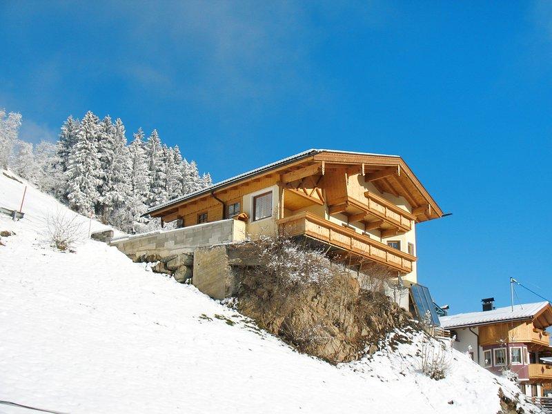 Reichegger (MHO791), location de vacances à Schwendau