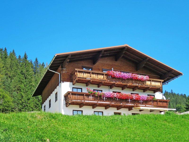 Tobias 2 (RST141), holiday rental in Filzmoos