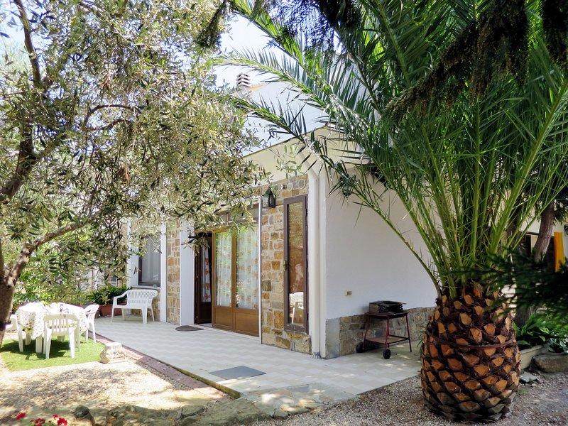 Olivo (PGI128), holiday rental in Poggi