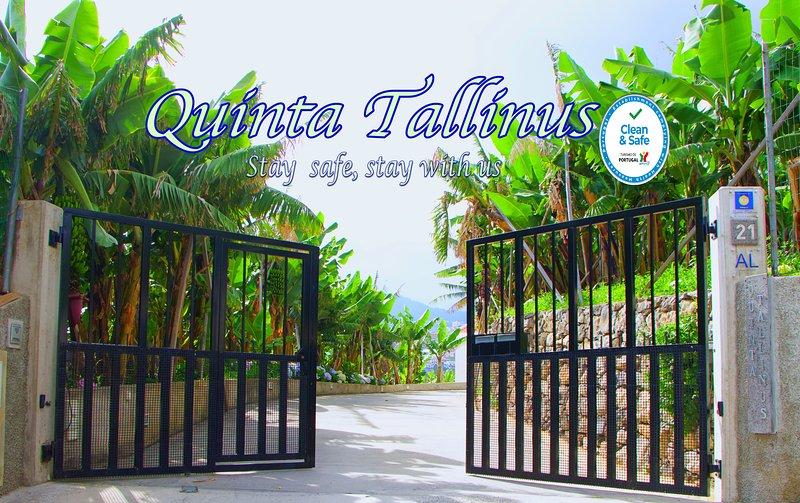 Quinta Tallinus - Superior, aluguéis de temporada em São Martinho