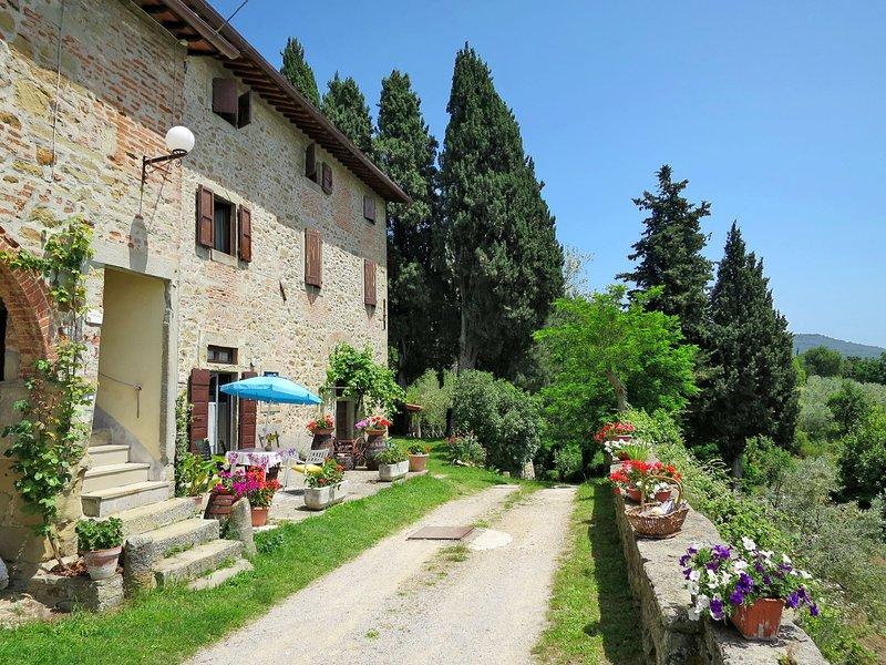 Belvedere - Cipressi (CFS210), vacation rental in Castelfranco Piandisco