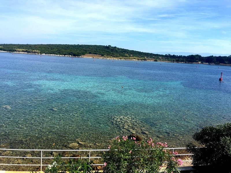 Blue - right at the beach: A3(2+2) - Ilovik (Island Ilovik), casa vacanza a Mali Losinj