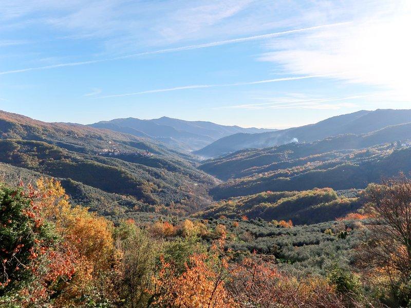 Casun de Vanè (COX112), holiday rental in Borgomaro