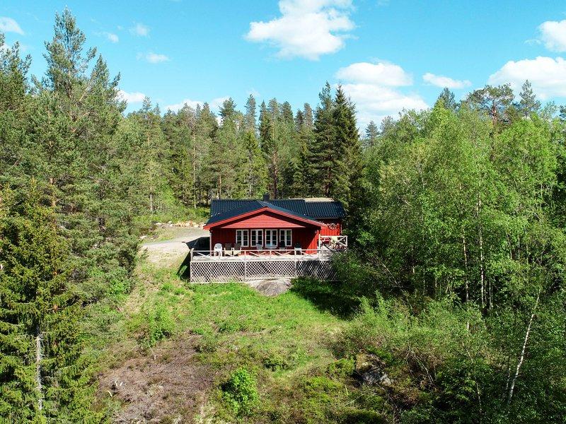 Hustjønn (TEM022), Ferienwohnung in Nissedal Municipality