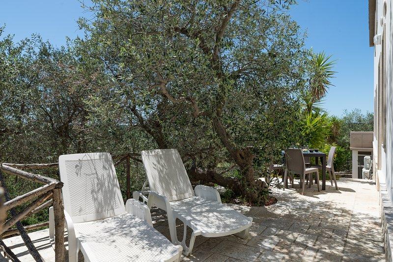 Relax e belvedere alla Selva di Fasano - Il Vecchio Pozzo, holiday rental in Cocolicchio