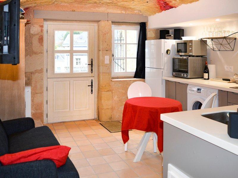 Gîte troglodytique (AZY106), holiday rental in Azay-le-Rideau