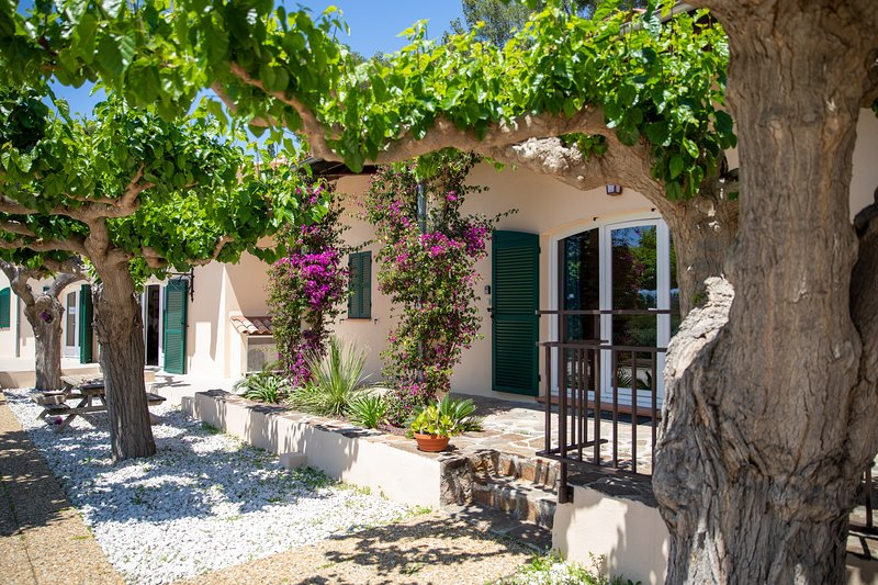 Domaine de la Navicelle - Cabernet, vacation rental in Le Pradet