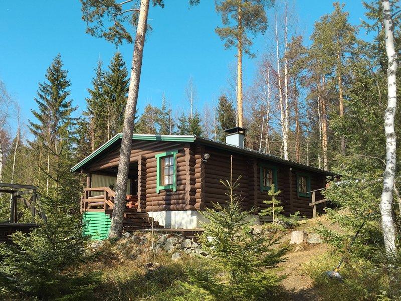 Grönlund (FIK068), location de vacances à Eno