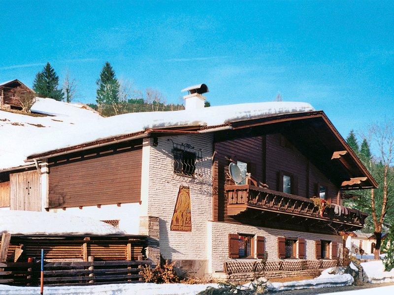 Schwarzenegg (WAR200), vacation rental in Wagrain