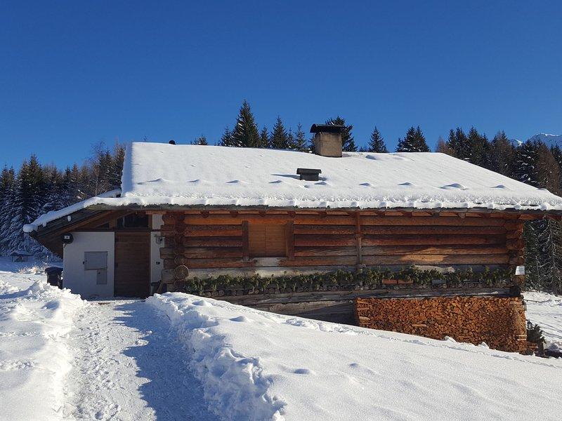 Chalet Baita Tabià (PRZ350), vakantiewoning in Ziano di Fiemme