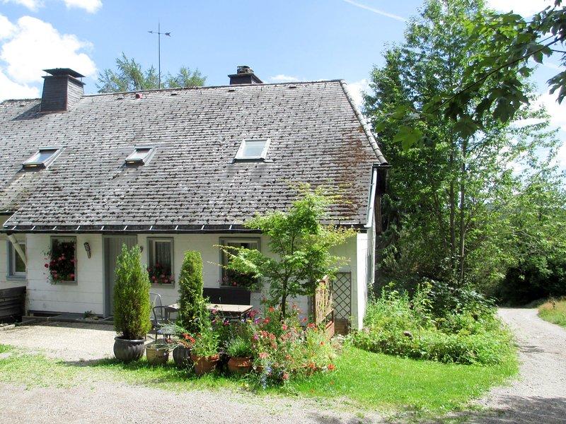 Blechnerhof (FBG211), casa vacanza a Saig