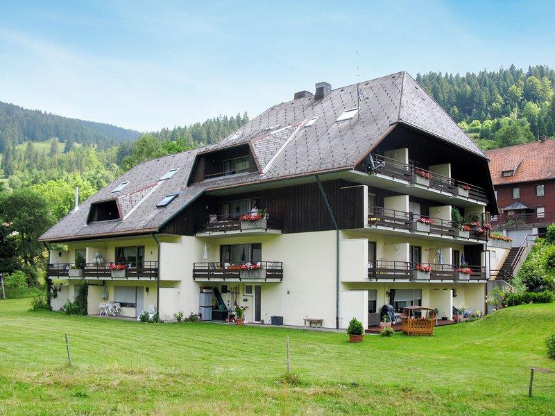 Haus Dietsche (MEZ110), holiday rental in Menzenschwand-Hinterdorf