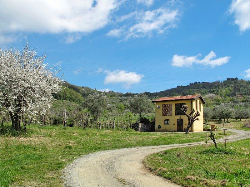 Pratolina (LSZ311), holiday rental in Giovagallo