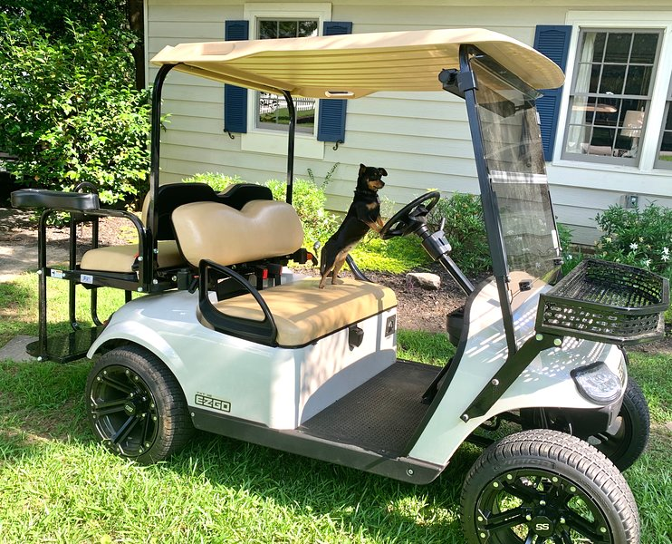golf cart available to rent by the day or the week.  ask us about the fees