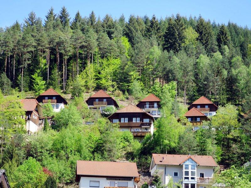 Sonnenschein, holiday rental in Schramberg