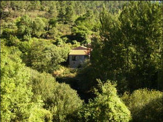 Villa Elena casa frente al río. ¡¡Una maravilla!!, aluguéis de temporada em O Barco de Valdeorras