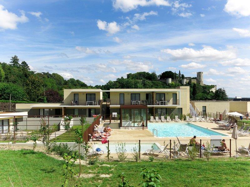Le Clos Saint Michel (CIC101), holiday rental in Chinon