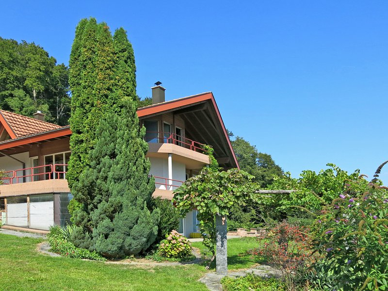 Faulensee (FAE100), holiday rental in Canton of Bern