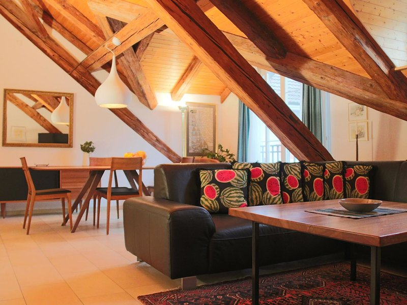 Luxury Penthouse, vacation rental in Endingen