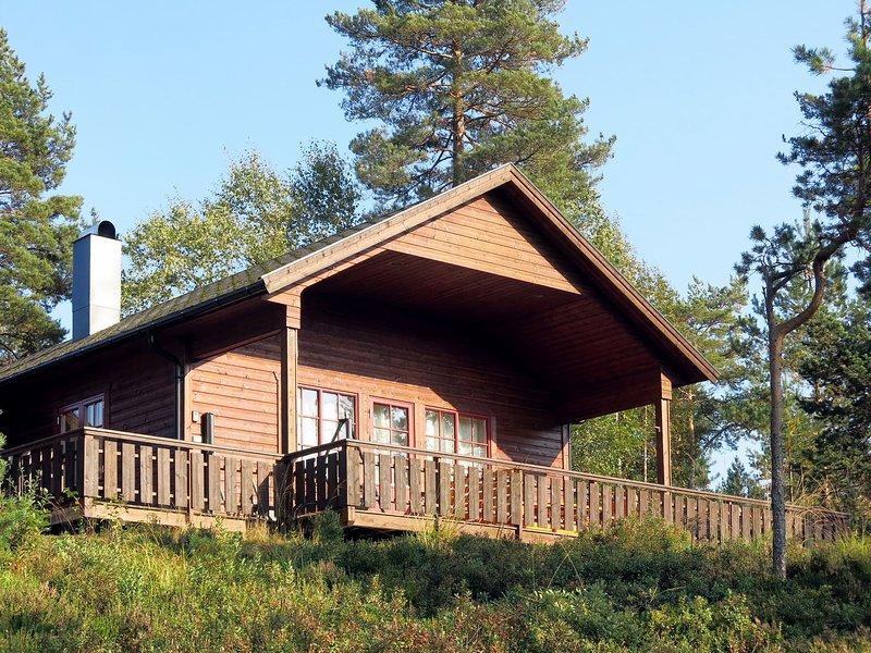 Sandtjønn (TEM019), Ferienwohnung in Nissedal Municipality