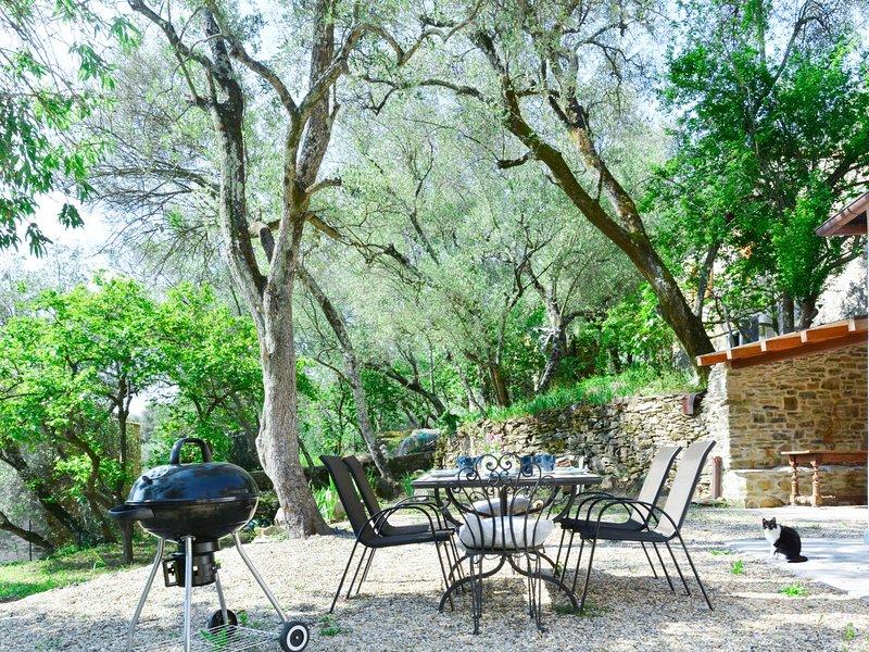 Sogno (PRE184), holiday rental in Borgomaro