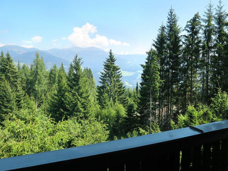 Puschitz (VER112), holiday rental in Bad Bleiberg