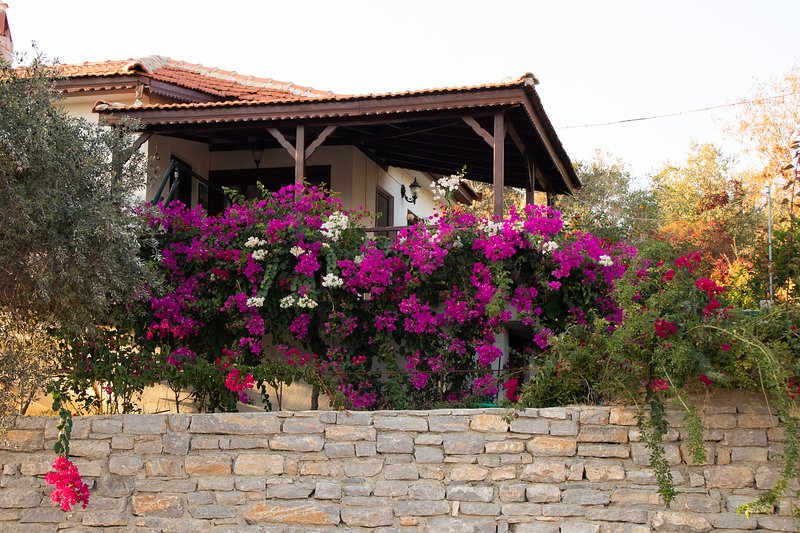Avlana House, holiday rental in Palamutbuku