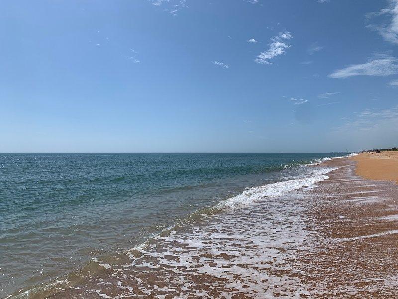 Amazing Atlantic Views(Private garage), alquiler de vacaciones en Flagler Beach