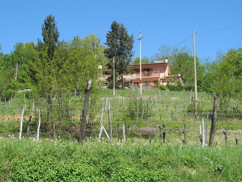 Casa dei Fiori (CPP400), holiday rental in Kojsko