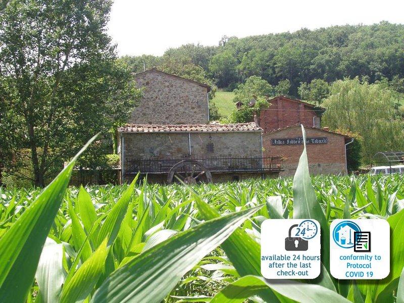 Typical farmhouse in Tuscany, Molino e Tabaccaia, casa vacanza a Castel San Niccolo