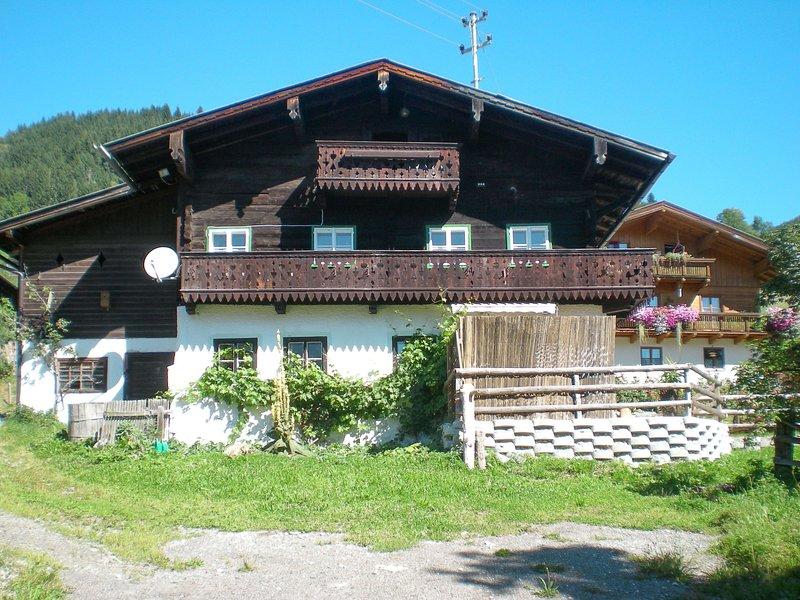 Lehen (EIT100), holiday rental in Muehlbach im Pinzgau