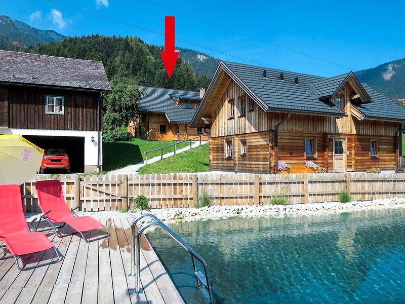 Grimmingblickhütte (GBM301), holiday rental in Niederoblarn