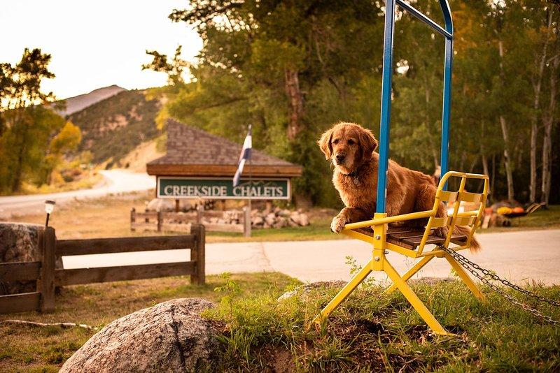 Creekside Chalets is a pet-friendly resort on Monarch Pass in Salida, CO