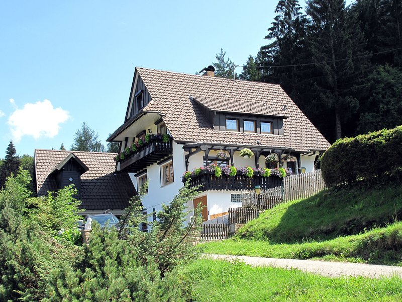 Tillisch (SWN100), holiday rental in Buehlertal
