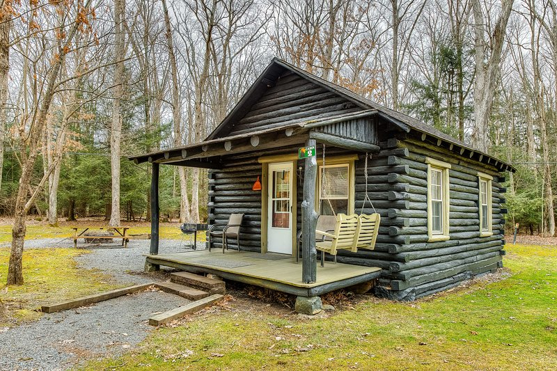 New listing! Adorable cabin in the woods w/ full kitchen, firepit, & porch!, vacation rental in McHenry
