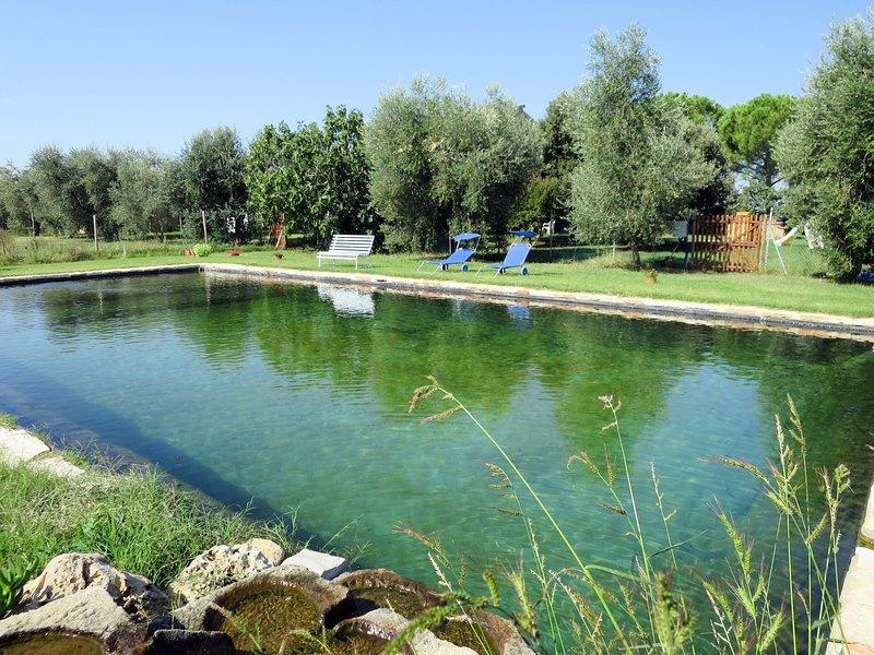 Podere Noé (ROC421), vacation rental in Sticciano Scalo