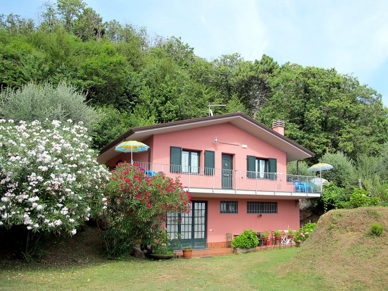 Brugiana (MAS410), holiday rental in Avenza
