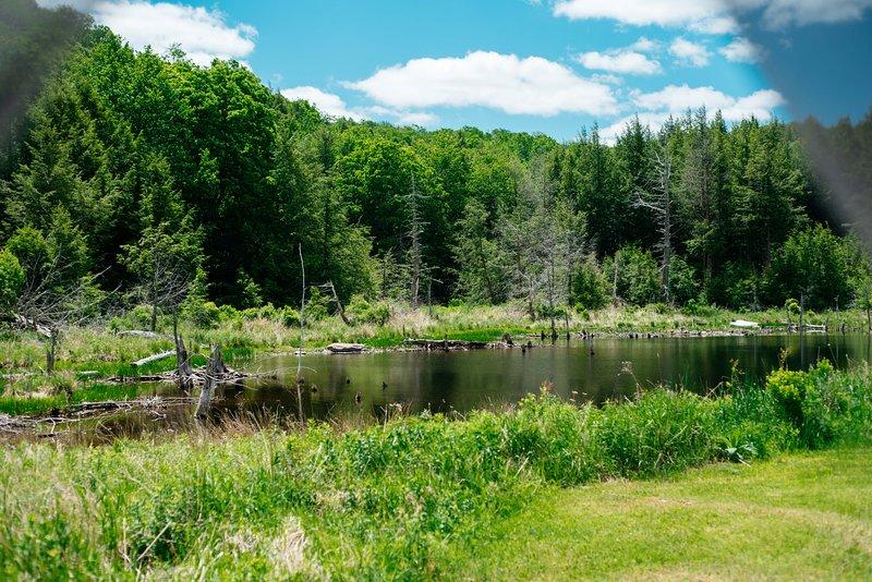 Tentrr Signature Site - El Dorado Camp, vacation rental in Hortonville
